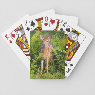 USA, Minnesota, Sandstone, Minnesota Wildlife 10 Playing Cards