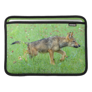USA, Minnesota, Sandstone, Minnesota Wildlife 10 Sleeve For MacBook Air