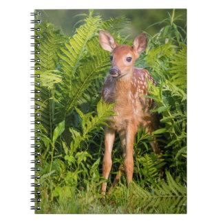 USA, Minnesota, Sandstone, Minnesota Wildlife 10 Spiral Notebook