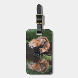 USA, Minnesota, Sandstone, Minnesota Wildlife 11 Bag Tag