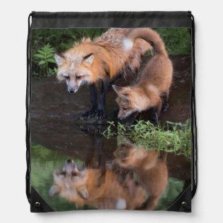 USA, Minnesota, Sandstone, Minnesota Wildlife 11 Drawstring Bag