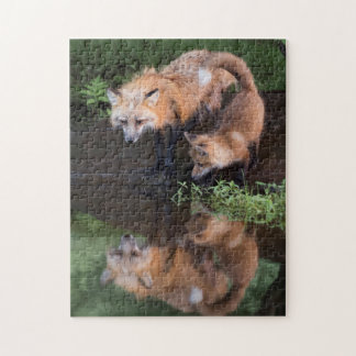 USA, Minnesota, Sandstone, Minnesota Wildlife 11 Jigsaw Puzzle