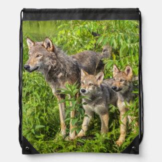 USA, Minnesota, Sandstone, Minnesota Wildlife 12 Drawstring Bag