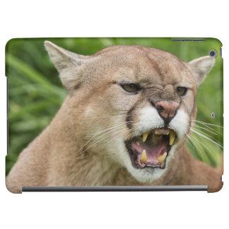 USA, Minnesota, Sandstone, Minnesota Wildlife 12 iPad Air Case