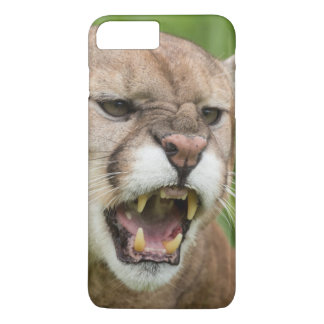 USA, Minnesota, Sandstone, Minnesota Wildlife 12 iPhone 8 Plus/7 Plus Case