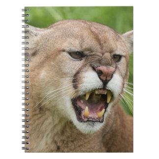 USA, Minnesota, Sandstone, Minnesota Wildlife 12 Notebook