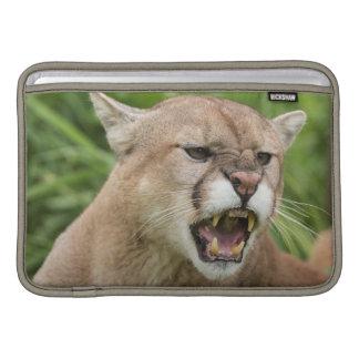 USA, Minnesota, Sandstone, Minnesota Wildlife 12 Sleeve For MacBook Air