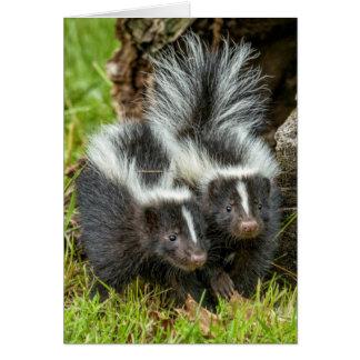 USA, Minnesota, Sandstone, Minnesota Wildlife 13 Card