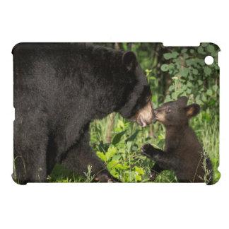 USA, Minnesota, Sandstone, Minnesota Wildlife 13 Cover For The iPad Mini