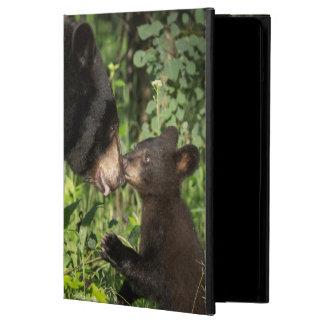 USA, Minnesota, Sandstone, Minnesota Wildlife 13 iPad Air Case