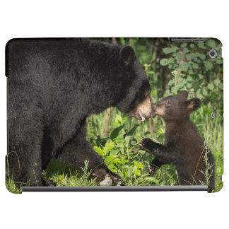 USA, Minnesota, Sandstone, Minnesota Wildlife 13 iPad Air Cover