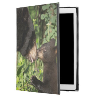"USA, Minnesota, Sandstone, Minnesota Wildlife 13 iPad Pro 12.9"" Case"