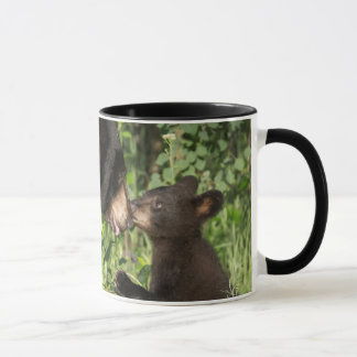 USA, Minnesota, Sandstone, Minnesota Wildlife 13 Mug
