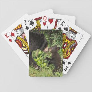 USA, Minnesota, Sandstone, Minnesota Wildlife 13 Playing Cards