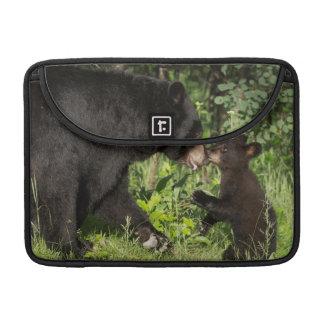 USA, Minnesota, Sandstone, Minnesota Wildlife 13 Sleeve For MacBook Pro