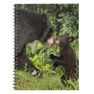 USA, Minnesota, Sandstone, Minnesota Wildlife 13 Spiral Note Book