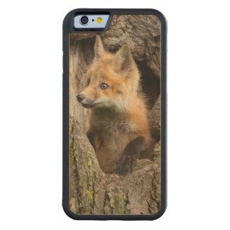 USA, Minnesota, Sandstone, Minnesota Wildlife 14 Carved Maple iPhone 6 Bumper Case