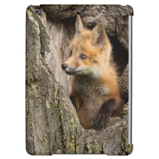 USA, Minnesota, Sandstone, Minnesota Wildlife 14 Cover For iPad Air