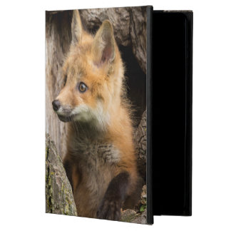 USA, Minnesota, Sandstone, Minnesota Wildlife 14 Cover For iPad Air
