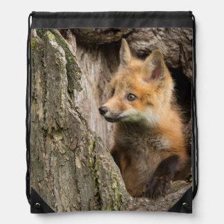 USA, Minnesota, Sandstone, Minnesota Wildlife 14 Drawstring Bag