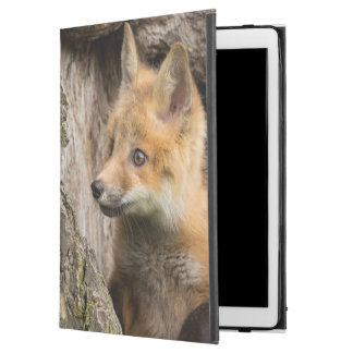 "USA, Minnesota, Sandstone, Minnesota Wildlife 14 iPad Pro 12.9"" Case"
