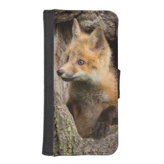 USA, Minnesota, Sandstone, Minnesota Wildlife 14 iPhone SE/5/5s Wallet Case