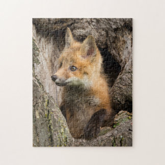 USA, Minnesota, Sandstone, Minnesota Wildlife 14 Jigsaw Puzzle