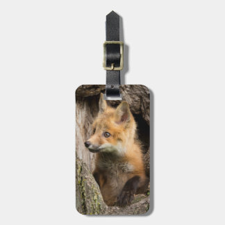 USA, Minnesota, Sandstone, Minnesota Wildlife 14 Luggage Tag