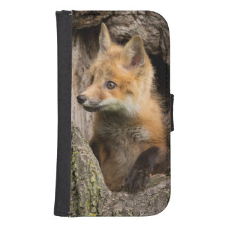 USA, Minnesota, Sandstone, Minnesota Wildlife 14 Samsung S4 Wallet Case