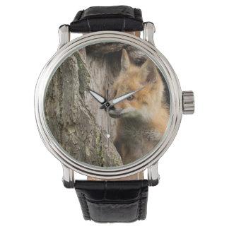 USA, Minnesota, Sandstone, Minnesota Wildlife 14 Wristwatches