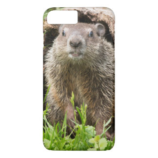 USA, Minnesota, Sandstone, Minnesota Wildlife 15 iPhone 8 Plus/7 Plus Case
