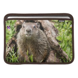 USA, Minnesota, Sandstone, Minnesota Wildlife 15 Sleeve For MacBook Air