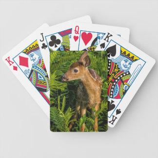 USA, Minnesota, Sandstone, Minnesota Wildlife 16 Bicycle Playing Cards
