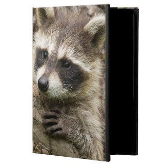 USA, Minnesota, Sandstone, Minnesota Wildlife 16 Case For iPad Air