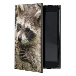 USA, Minnesota, Sandstone, Minnesota Wildlife 16 Cover For iPad Mini