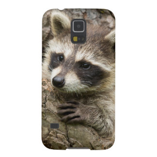 USA, Minnesota, Sandstone, Minnesota Wildlife 16 Galaxy S5 Case