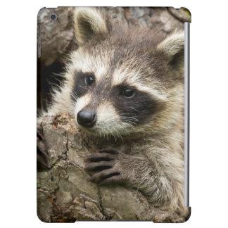 USA, Minnesota, Sandstone, Minnesota Wildlife 16 iPad Air Cover