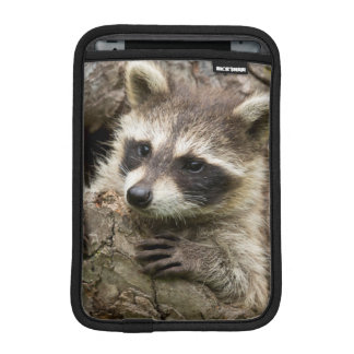 USA, Minnesota, Sandstone, Minnesota Wildlife 16 iPad Mini Sleeve