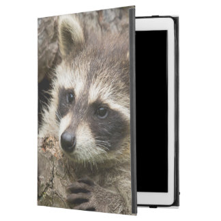 "USA, Minnesota, Sandstone, Minnesota Wildlife 16 iPad Pro 12.9"" Case"