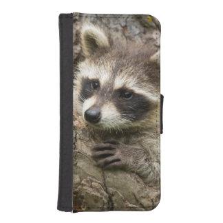 USA, Minnesota, Sandstone, Minnesota Wildlife 16 iPhone SE/5/5s Wallet Case