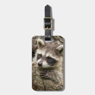 USA, Minnesota, Sandstone, Minnesota Wildlife 16 Luggage Tag