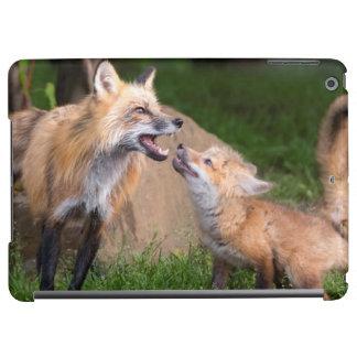 USA, Minnesota, Sandstone, Minnesota Wildlife 17 Case For iPad Air