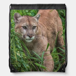 USA, Minnesota, Sandstone, Minnesota Wildlife 18 Drawstring Bag