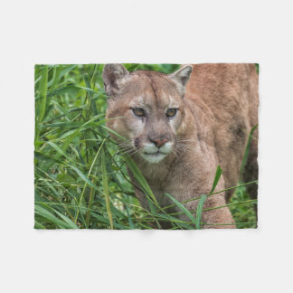 USA, Minnesota, Sandstone, Minnesota Wildlife 18 Fleece Blanket