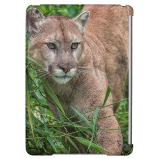 USA, Minnesota, Sandstone, Minnesota Wildlife 18 iPad Air Case
