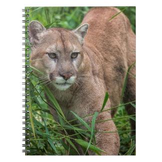 USA, Minnesota, Sandstone, Minnesota Wildlife 18 Spiral Notebook