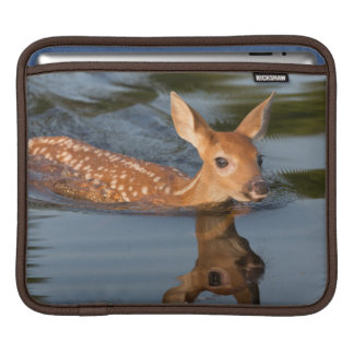USA, Minnesota, Sandstone, Minnesota Wildlife 19 iPad Sleeve