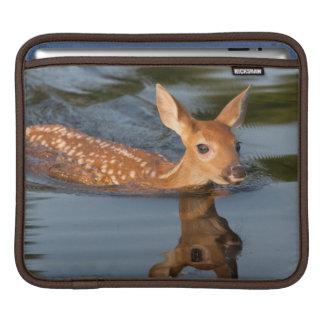 USA, Minnesota, Sandstone, Minnesota Wildlife 19 iPad Sleeves