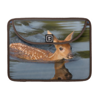 USA, Minnesota, Sandstone, Minnesota Wildlife 19 Sleeve For MacBook Pro