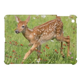 USA, Minnesota, Sandstone, Minnesota Wildlife 20 Cover For The iPad Mini